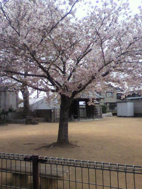 間もなく名古屋(*^^*)