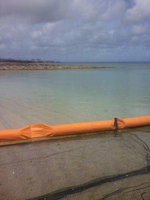 沖縄での海水浴のご注意
